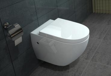 lux aqua wand h nge wc lnkl nano beschichtung b2376. Black Bedroom Furniture Sets. Home Design Ideas